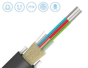 Module riser fibre optic